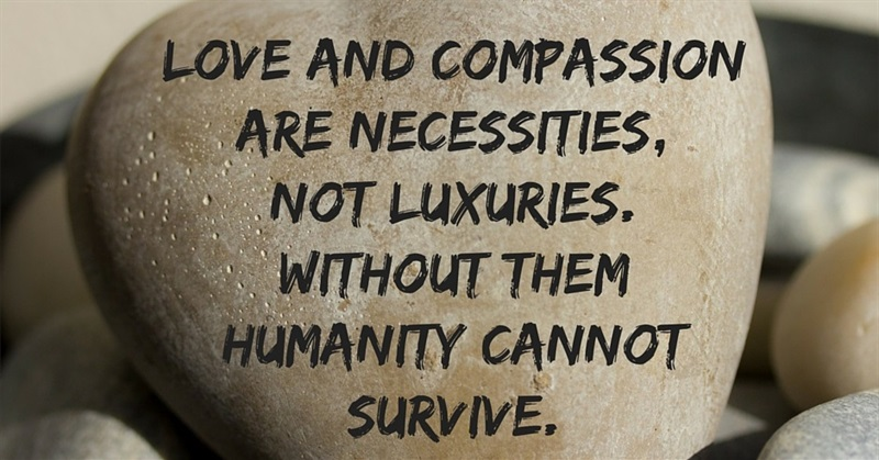 Image result for compassion