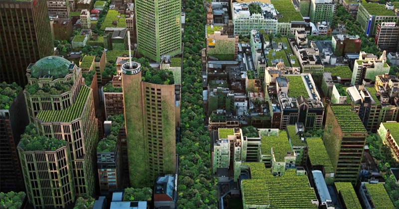Changing the Way We Think About Ecocities