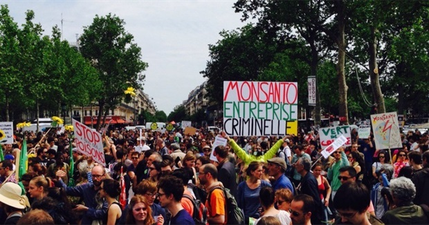 Activists, Farmers, Indigenous People Rise up to March Against Monsanto