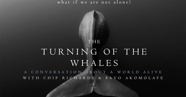 The Turning of the Whales: What If We Are Not Alone? What If the 'Others' Have Been Here All Along?