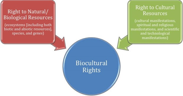 Biocultural Rights: A New Paradigm for Protecting Natural and Cultural Resources of Indigenous Communities