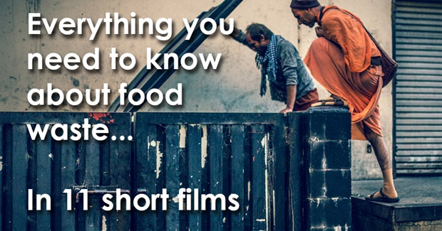 Everything You Need to Know About Food Waste... In 11 Short Films