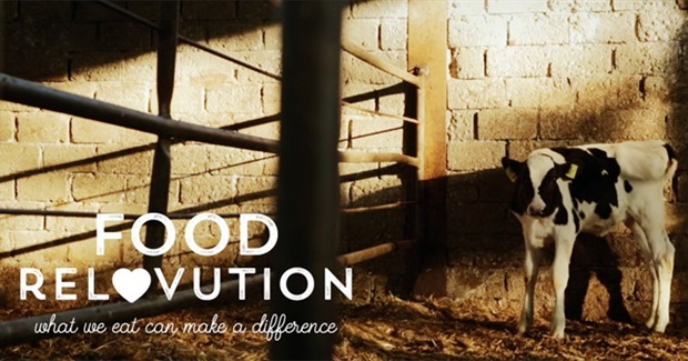 Food ReLOVution: What we eat can make a difference. Help Support the Film's Indiegogo Crowdfunding Campaign