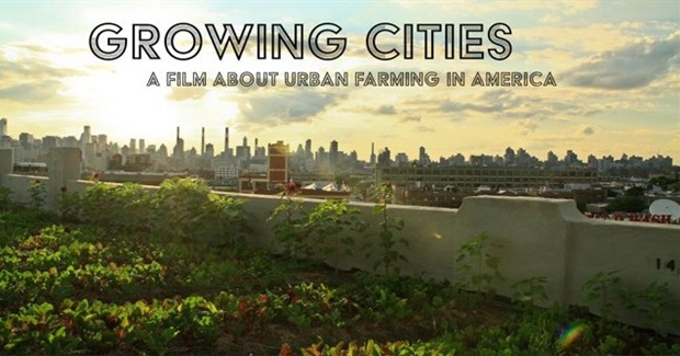 MOVIE NIGHT: Growing Cities