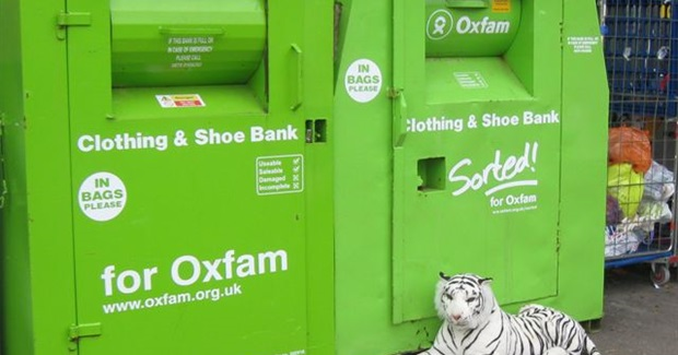 What's to Be Done With Oxfam?