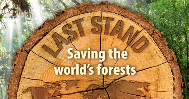 Last Stand - Our Last Ancient Forests Are Under Assault