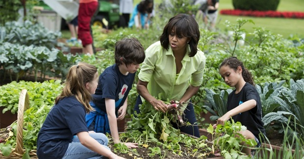 Can Green Spaces at Schools Make Children smarter?