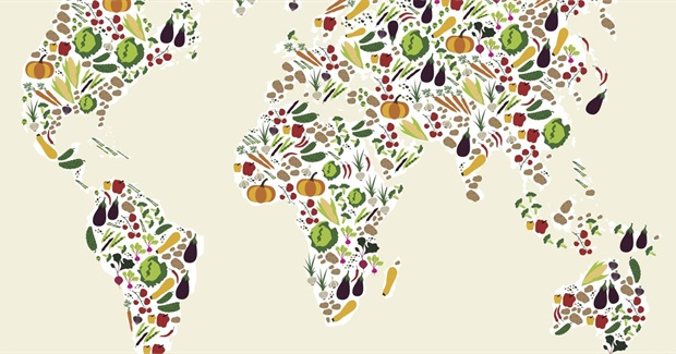 Going Veggie Would Cut Global Food Emissions by Two Thirds and Save Millions of Lives - New Study