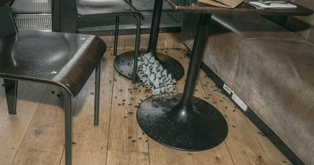 We Watched Angry Activists Release Thousands of Bugs in a Busy London Restaurant