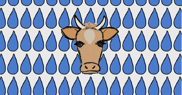 When It Comes to Copious Water Consumption, Animal Ag is the Biggest Offender