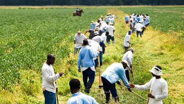 How Prison Labor Is the New American Slavery and Most of Us Unknowingly Support It