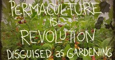 Permaculture: A Quiet Revolution (2008)